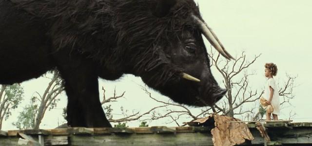Verkaufsstart: Beasts Of The Southern Wild
