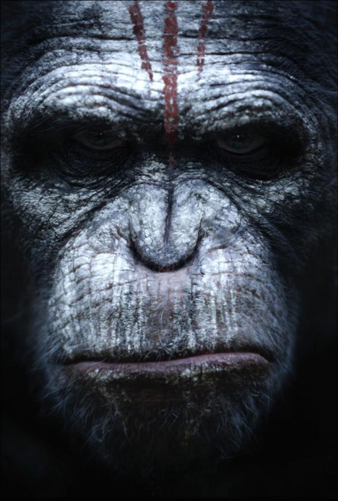 Planet der Affen - Revolution Poster 3