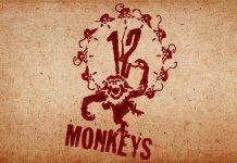 12 Monkeys Serie grünes Licht