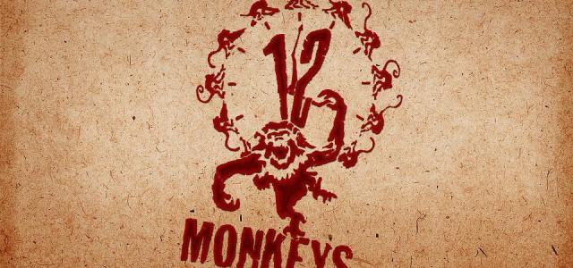 """Grünes Licht für die erste Staffel der """"12 Monkeys""""-Serie"""