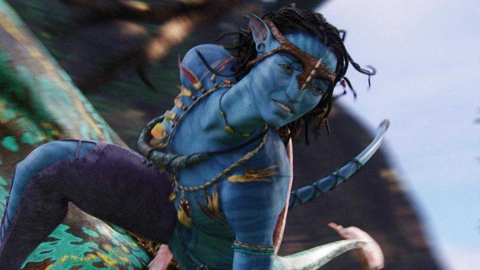 Avatar Sequels Drehzeit