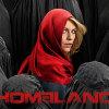 Homeland Season 5 News