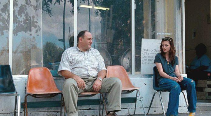 Willkommen bei den Rileys (2010) Filmkritik