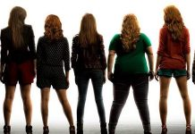 Box-Office USA Pitch Perfect 2