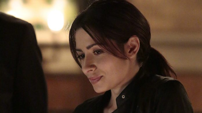 Person of Interest Staffel 5 Sarah Shahi