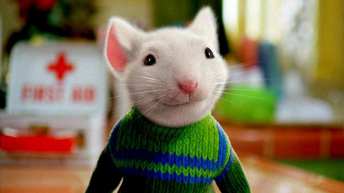 Stuart Little Remake