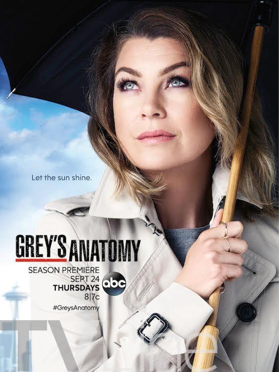 Greys Anatomy Staffel 12 Trailer & Poster