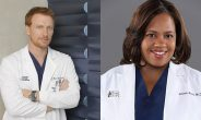 Greys Anatomy Staffel 13 Cast