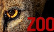Zoo Staffel 3 Start