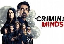 Criminal Minds Staffel 13