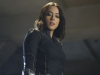 Agents of SHIELD Staffel 5