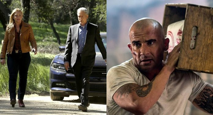 Prison Break Navy CIS Season 14 Quoten