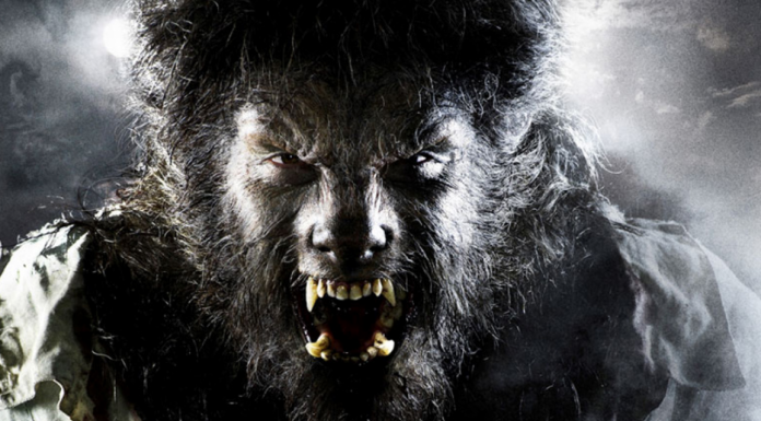 The Wolfman Serie