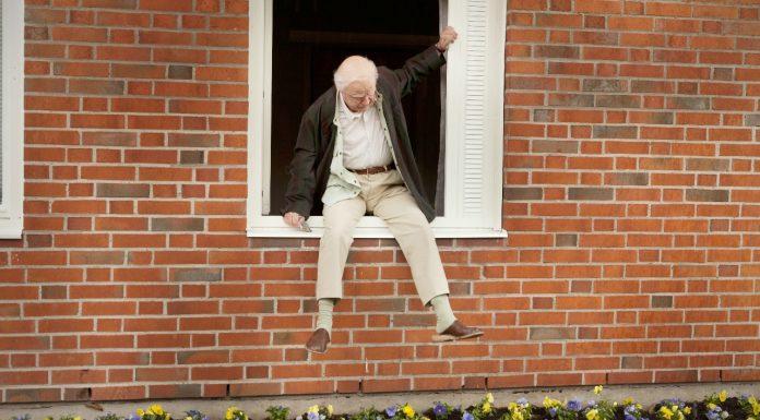 Der Hundertjährige, der aus dem Fenster stieg und verschwand (2014) Filmkritik
