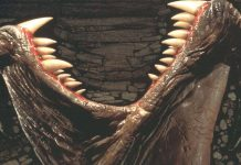 Tremors 5 News