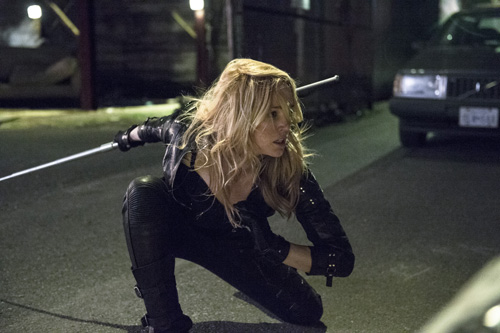 The Flash Arrow Spin Off Caity Lotz