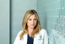 Greys Anatomy Staffel 13 14