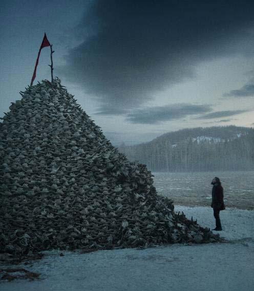 The Revenant Trailer & Bilder 2