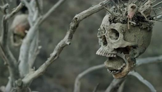 Bone Tomahawk Filmbild 2