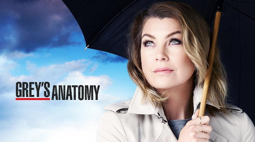 Greys Anatomy Staffel 13