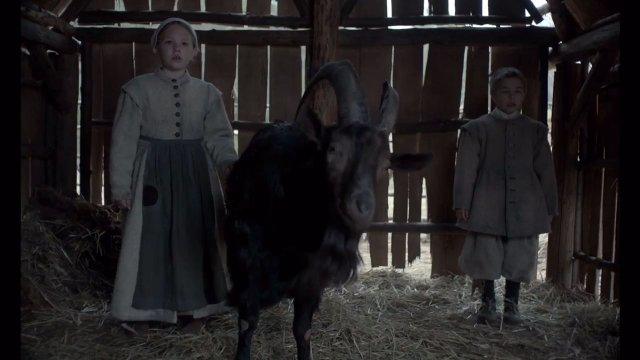 The Witch (2015) Filmbild 3
