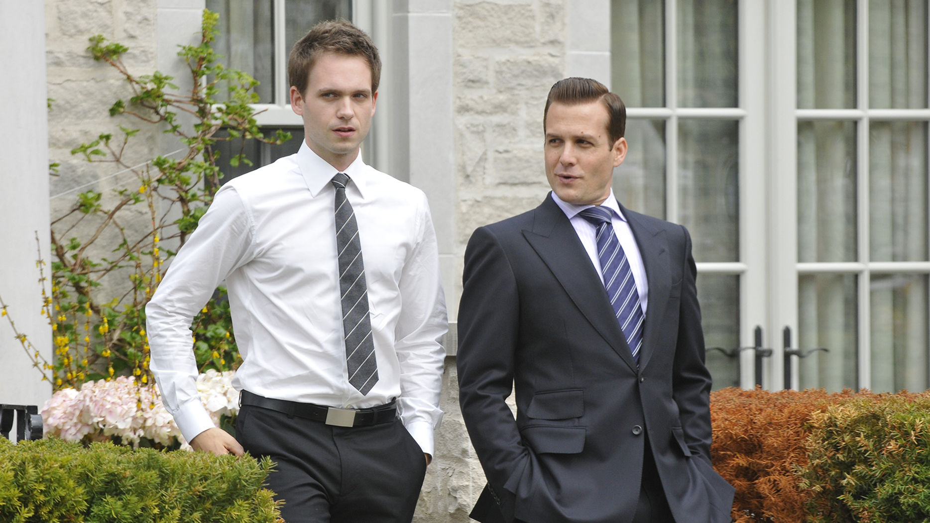 Suits Staffel 6 Start