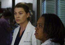 Greys Anatomy Season 13