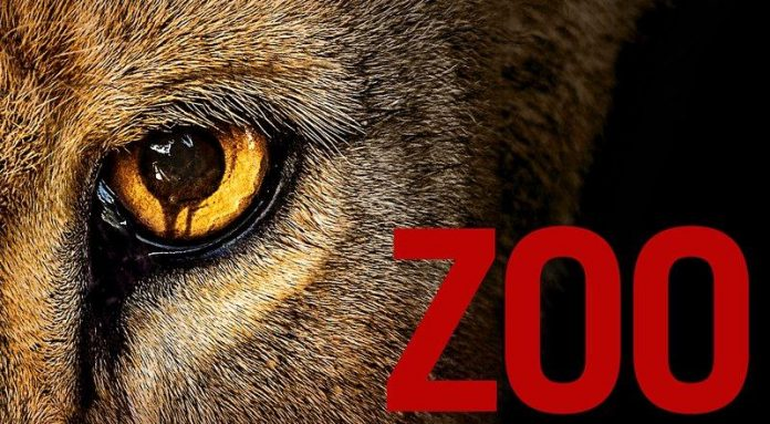 Zoo Staffel 3 Start