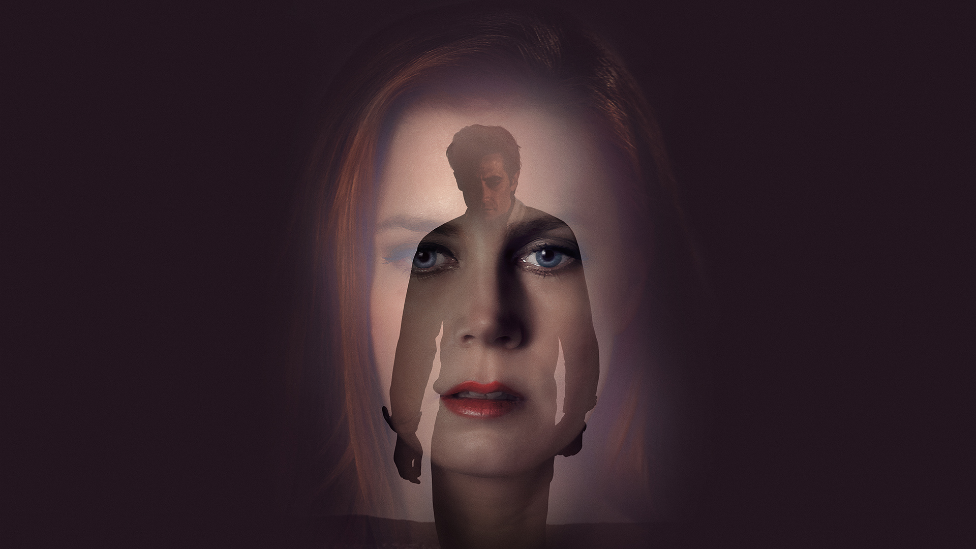 Nocturnal Animals (2016) Filmkritik