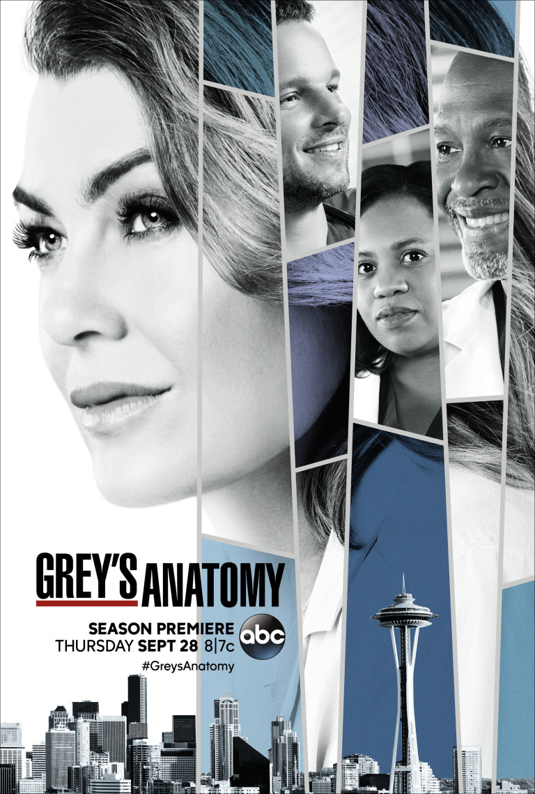Greys Anatomy Staffel 14 Poster 1