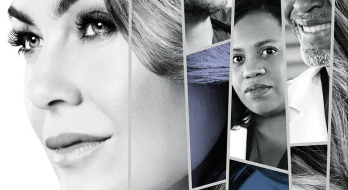 Greys Anatomy Staffel 14 Poster