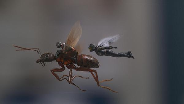 Ant Man and the Wasp (2018) Filmbild 5