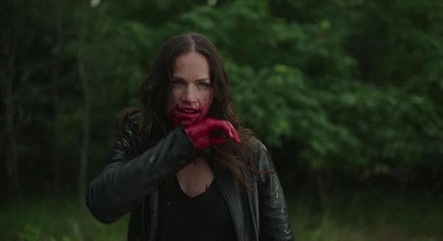 Van Helsing Staffel 4
