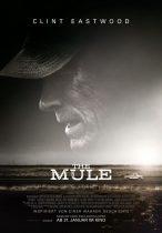 The Mule (2019) Kritik