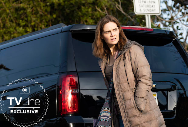 Animal Kingdom Staffel 4 Emily Deschanel