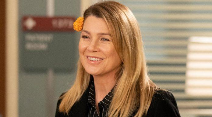 Greys Anatomy Staffel 16 17