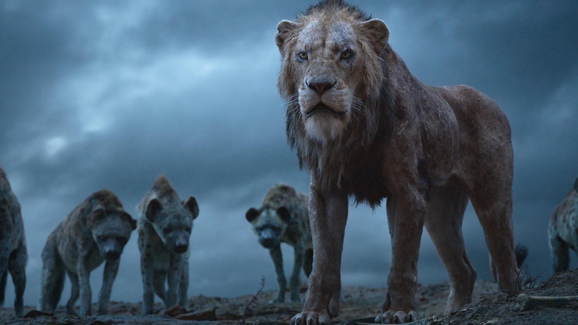 Der König der Löwen 2019 Filmbild 2