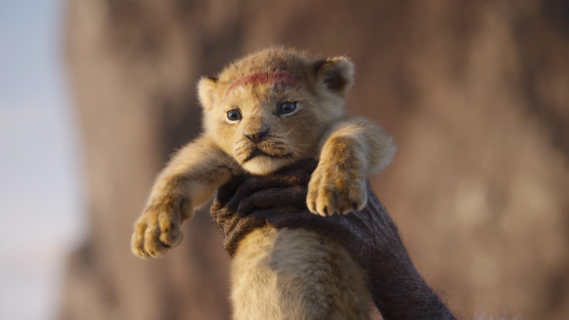 Der König der Löwen 2019 Filmbild 1