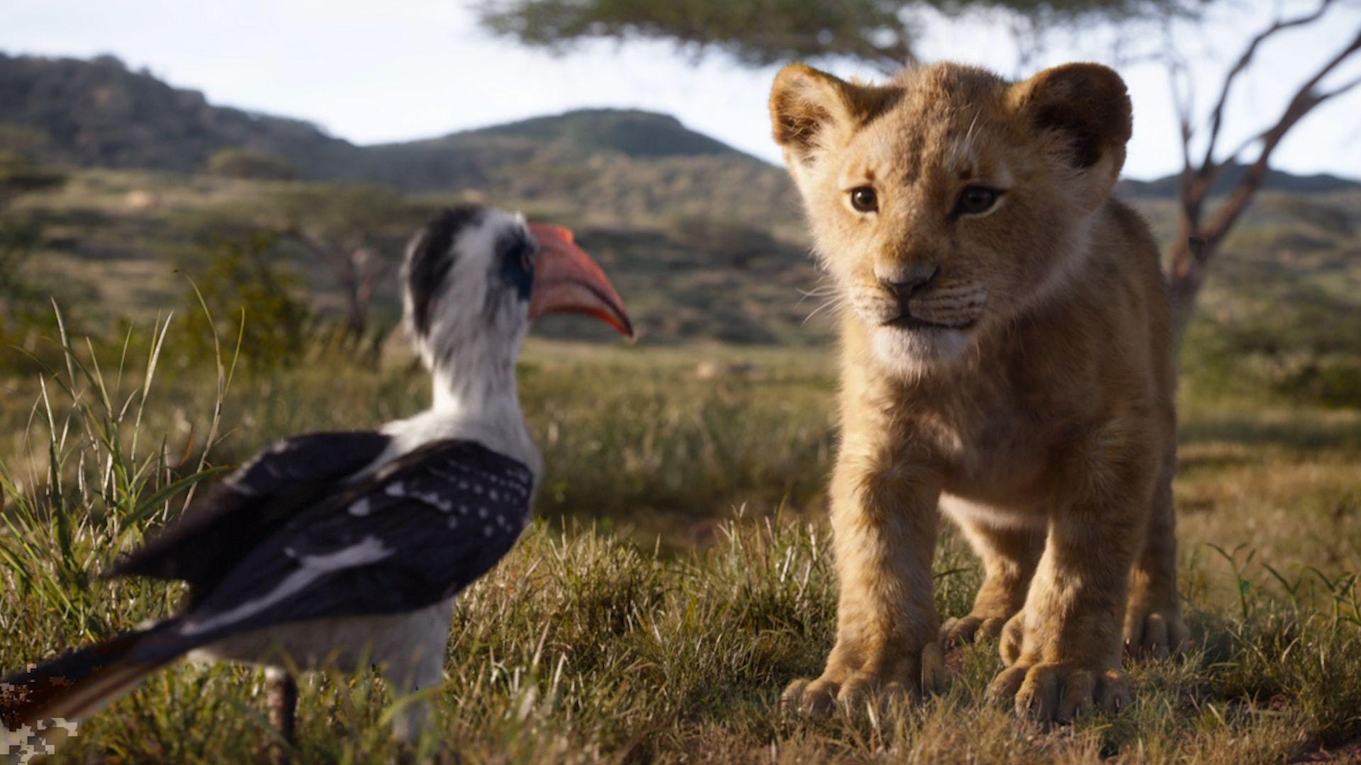 Der König der Löwen 2019 Filmbild 4