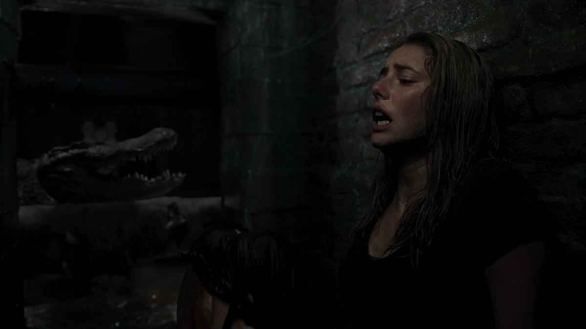 Crawl (2019) Filmbild 1