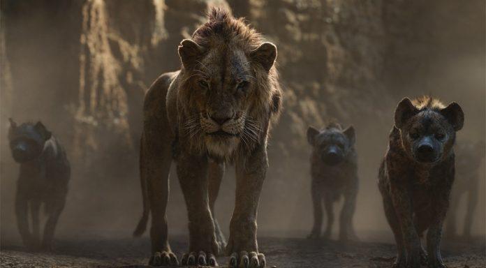Der König der Löwen Einspiel