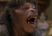 American Werewolf Reboot