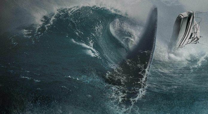 Blood Shark 3D