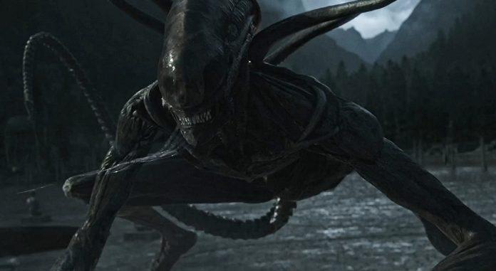 Alien Sequel