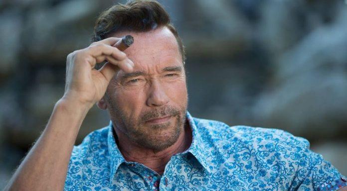 Arnold Schwarzenegger Serie